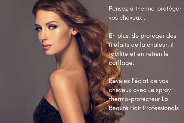 Coffrets La Beauté Hair Professionals